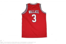 BEN WALLACE DETROIT OFFICIAL NBA RETRO SWINGMAN JERSEY by Nike