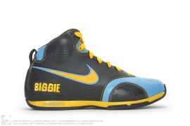 Zoom BB Biggie Damon Stoudamire HOH by Nike