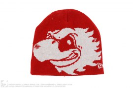 mens beanie Eagle Beanie by Undefeated