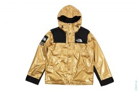 Metallic Mountain Parka by Supreme x The North Face